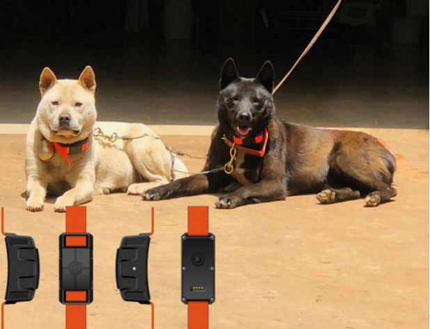 S9 Hunting dog GPS Tracker